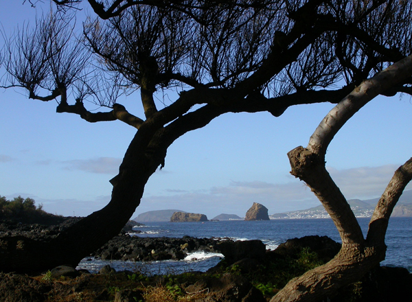 Another Island by Bob Ward. Copyright 2014. All rights reserved.